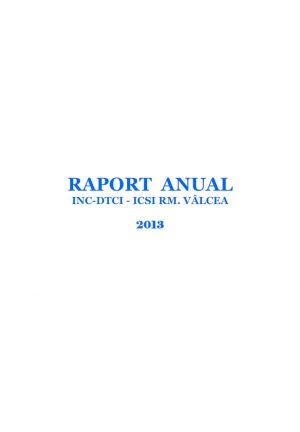 raport-anual-2013
